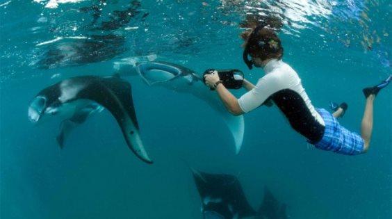 biosphere maldives